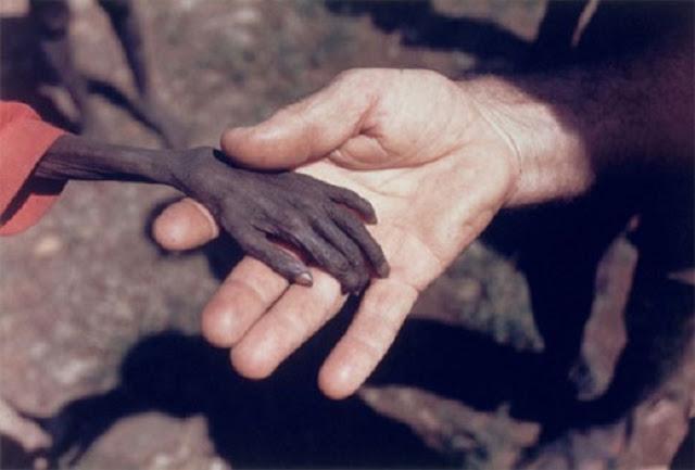 El Vaticano posee una enorme riqueza y podrían borrar la pobreza mundial 2 veces