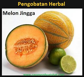 Obat Herbal Alami menggunakan Buah Melon