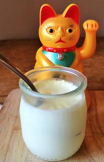 faire des yaourts, faire des yaourt maison, la laiterie de paris, blog fromage, blog fromage maison, recette yaourt facile, tour du monde des fromages , voyage fromage
