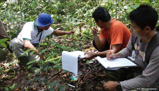 Foto : Hutan sebagai sarana riset dan edukas. Sumber : Modul 3 - High Carbon Stock (HCS) Approach Toolkit Versi 2.0