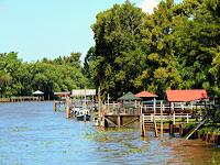 Argentina; Tigre; Delta del rio Paraná; Paraná; parque natural; natural park; parc naturel