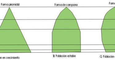 Biologia Poblacion Clasificacion De Los Seres Vivos