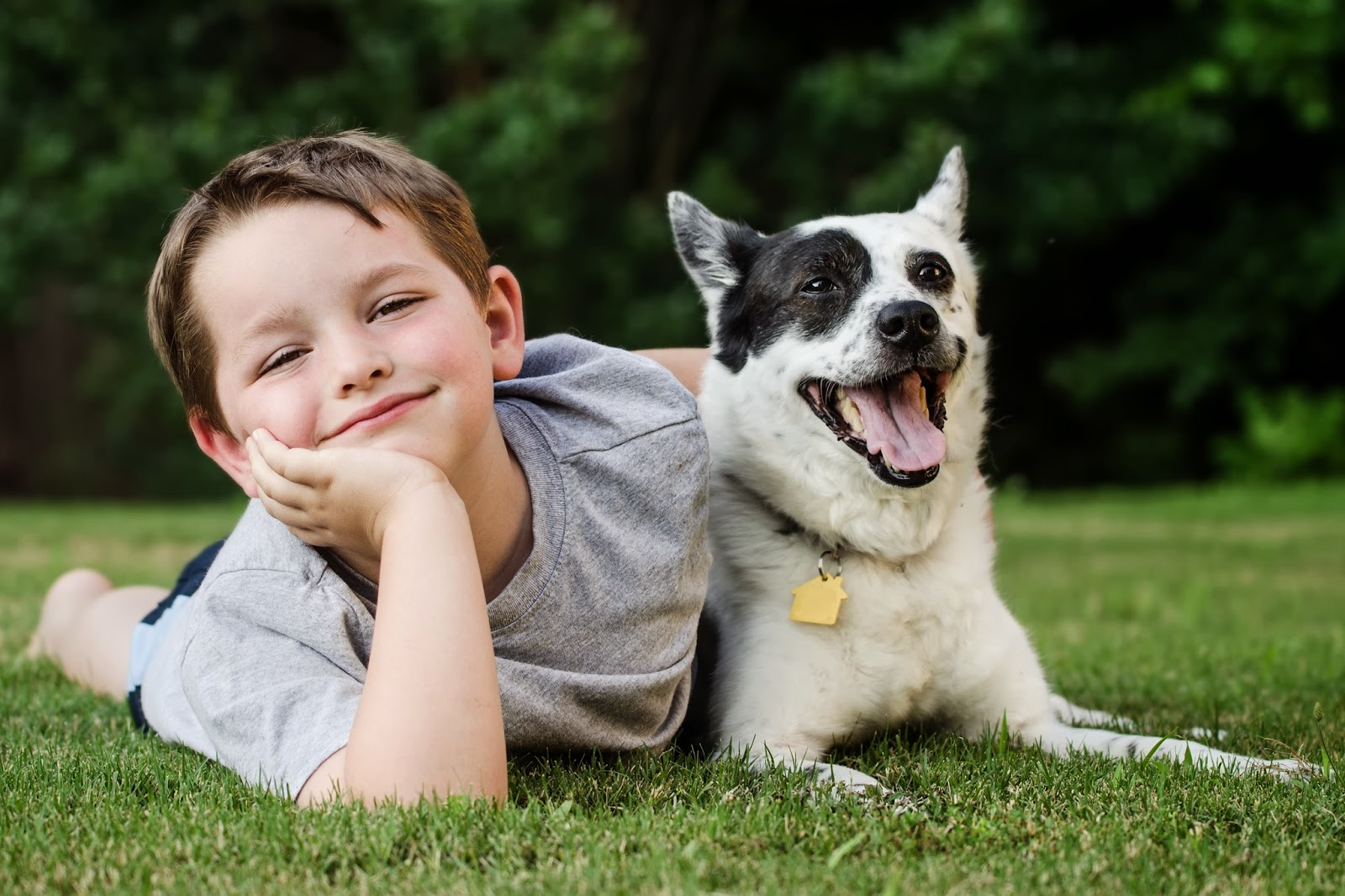 a young boy having fun with his black and white dog