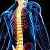 Είναι η Ελάχιστα Επεμβατική Χειρουργική το μέλλον στη Χειρουργική της Σπονδυλικής Στήλης