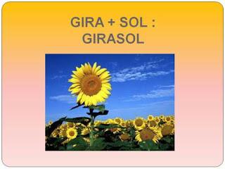 http://bromera.com/tl_files/activitatsdigitals/Tilde_3_PF/tilde3_u08_pag_52_1.swf
