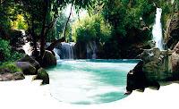 Концепция открытого бассейна в природной тематике