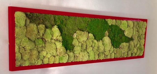 moswand of plantenwand tegen muur wall voor bedrijven op kantoor in Hasselt Limburg  Genk Sint-Truiden Tongeren Lommel Lummen Beringen Houthalen Helchteren