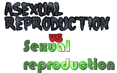 CBSE Class 10 - Biology - Asexual reproduction vs Sexual reproduction (#cbseNotes)