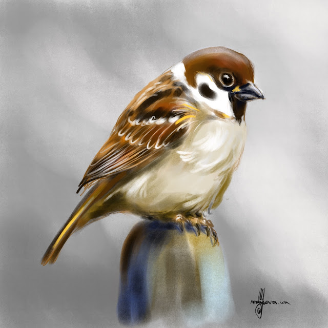 Tree Sparrow bird painting by Artmagenta