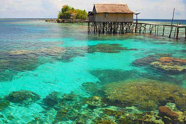 Wisata The Coral Triangle, Kepulauan Togean Sulawesi