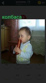 в комнате стоит ребенок и в руках держит колбасу