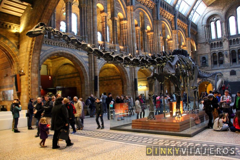 Museo de Historia Natural de Londres. Dippy