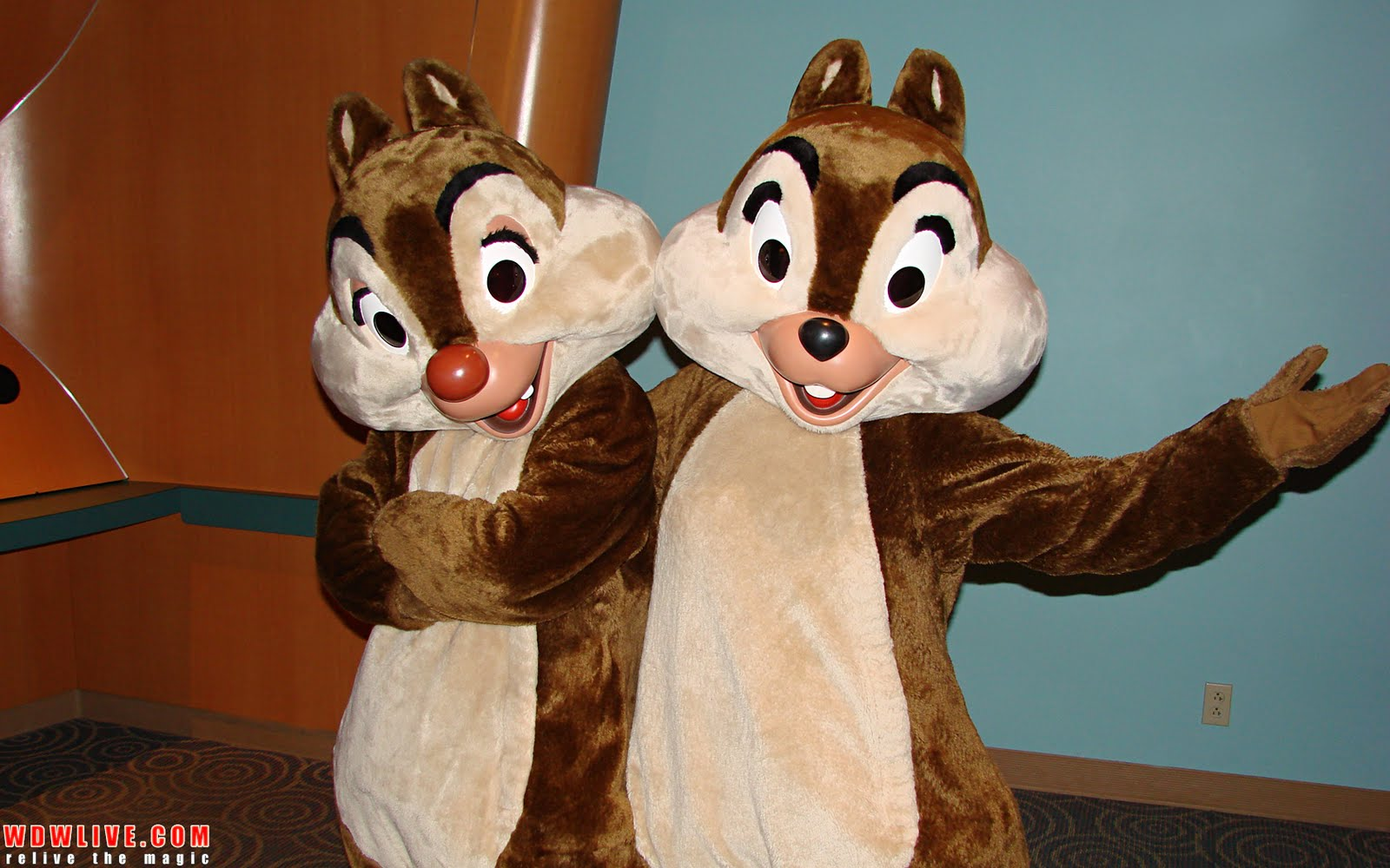 Chip And Dale Wallpaper Hd Desiree Huffman Chip And Dale Wallpaper
