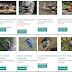 Latest List of Animals You must See at Nandankanan Zoo