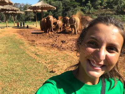 Voluntaria en el centro de rescate de elefantes en Tailandia.