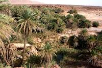 oasis, saf saf, viajes, desierto, marruecos, erfoud,