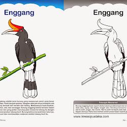 Gambar Lukisan Burung Kenyalang Cikimm Com