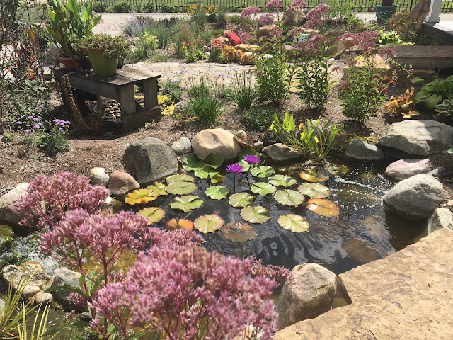 every water feature needs landscaping