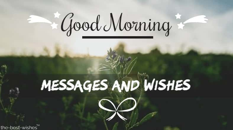 Best Good Morning Messages and Wishes