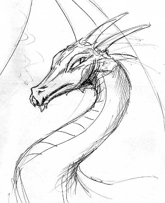 Easy Dragon Pencil Drawings