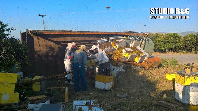 Ανατροπή φορτηγού με μελίσσια στην Αργολίδα - Χιλιάδες μέλισσες απελευθερώθηκαν στην εθνική οδό