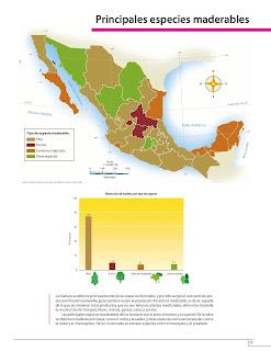 Apoyo Primaria Atlas de México 4to Grado Bloque IV Lección 6 Principales especies maderables