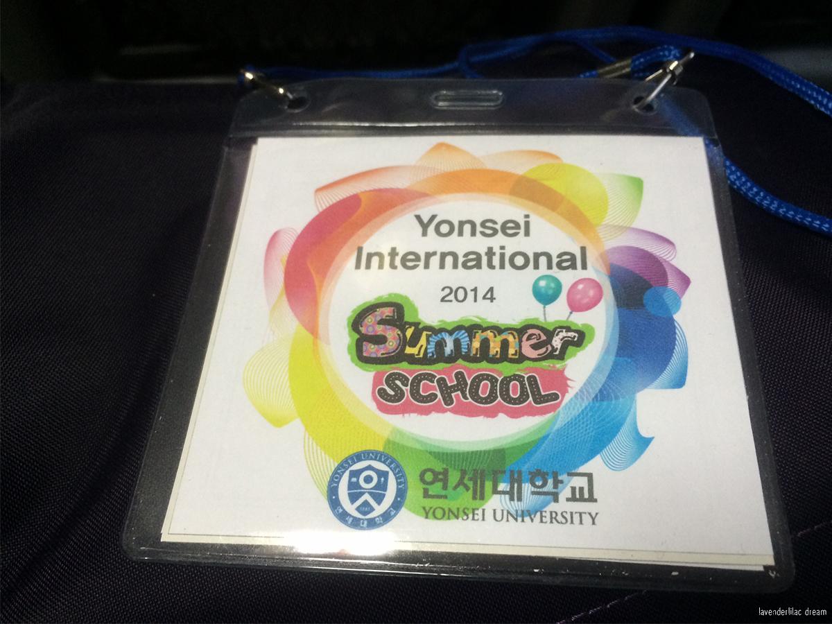 Seoul, Korea - Summer Study Abroad 2014 - Seoul City Touring - Yonsei University student