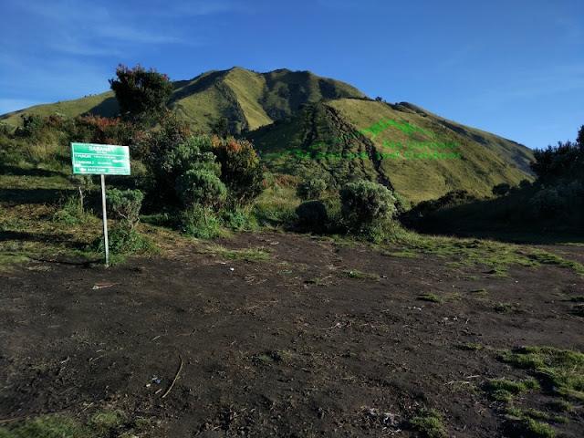 Sabana 1 gunung Merbabu