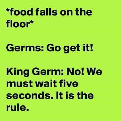 *food falls on the floor* Germs: Go get it! King Germ: No!