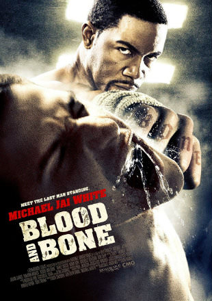 Blood and Bone 2009 Dual Audio 720p BluRay x264 [Hindi – English] ESubs