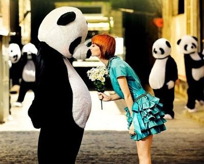 Kenapa Panda Berwarna Hitam Putih?