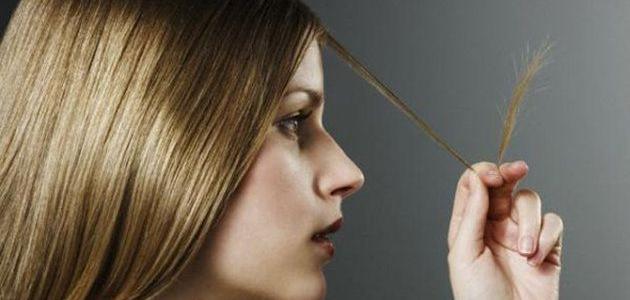طرق للقضاء على تقصف الشعر بالوصفات الطبيعيه