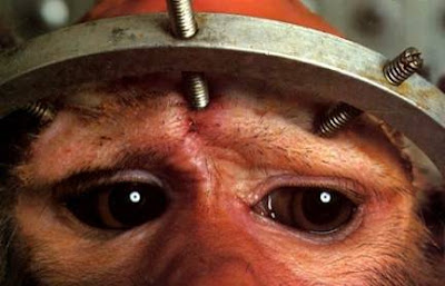 Verdades sobre la experimentación animal