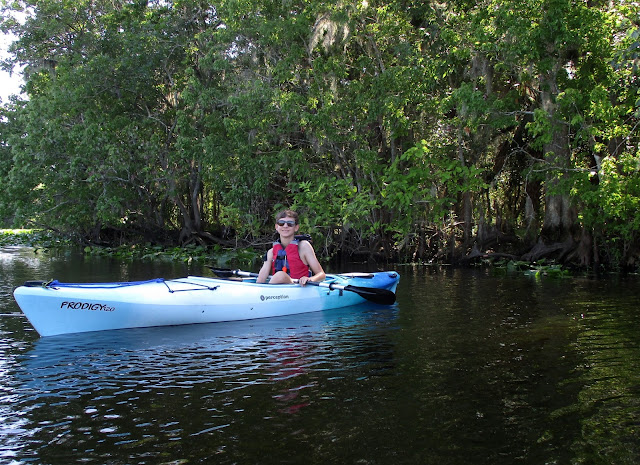 Guided Kayak Tour Near Daytona