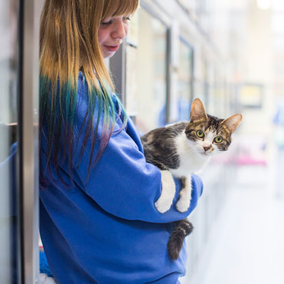 Cats Protection cat care volunteer