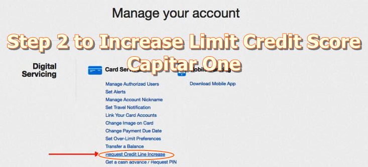 Capital one credit card cash advance pin number
