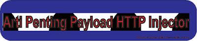 Penjelasan Kata kata dalam pembuatan Payload Pada aplikasi HTTP Injetor