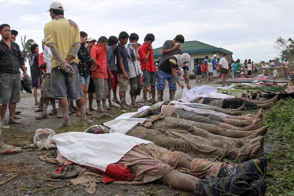 WISDOM OF A FOOL: Typhoon Pablo and Japan Quake