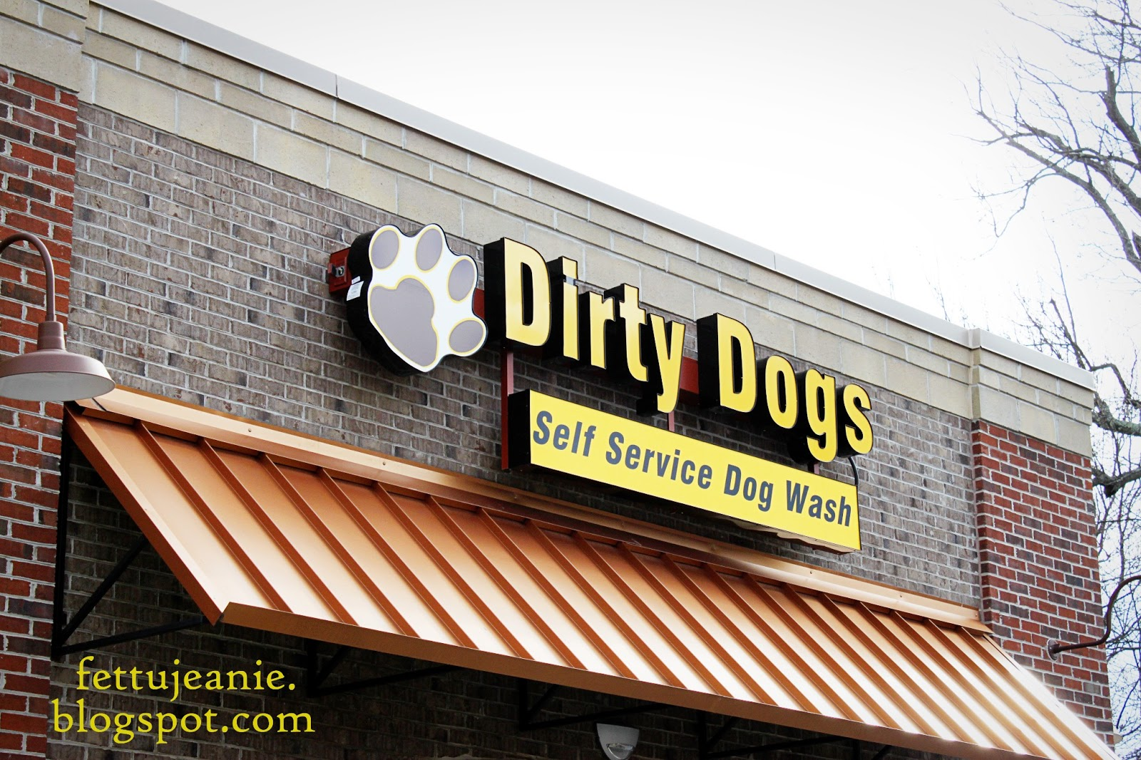 dirty dog grooming self service 30855
