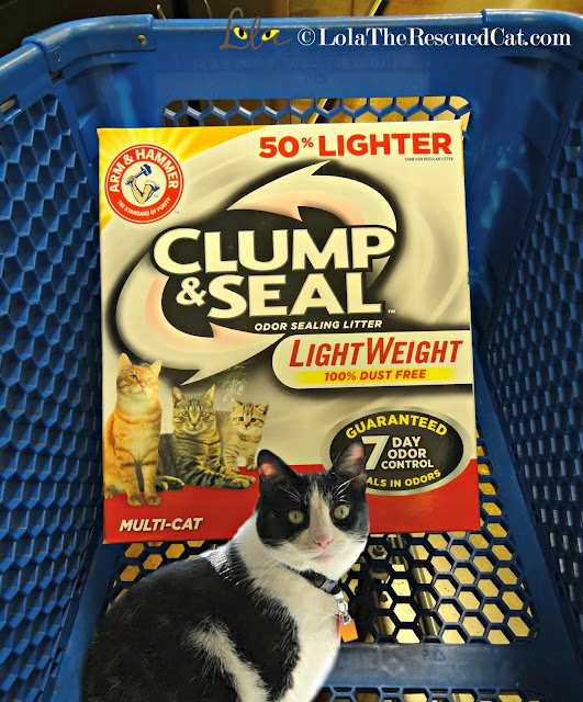 arm & hammer litter|clump and seal