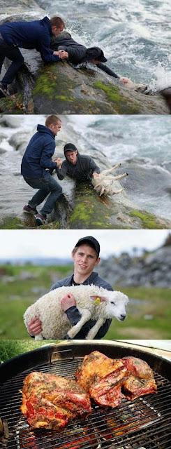 Menschen mit Fehlern - lustige Bilder falsche Tierliebe
