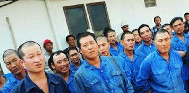 Nomor Satukan Buruh Lokal, Jangan Manjain Buruh Asing