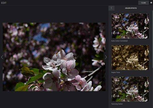 SmugMug, 10 trang web lưu trữ và chia sẻ hình ảnh tốt nhất
