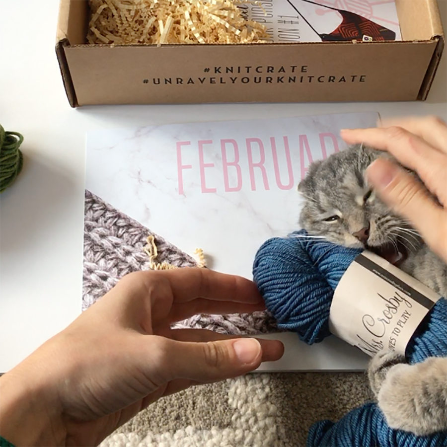 February 2017 KnitCrate with Tiger Shrimp, Dayana Knits blog