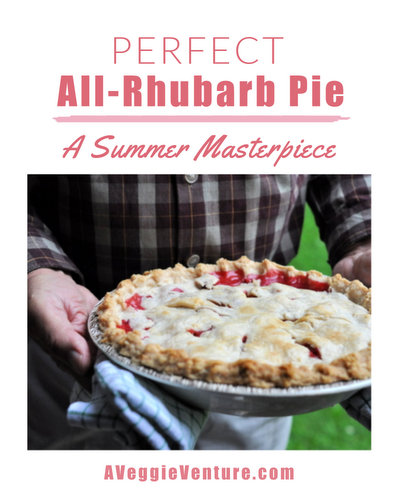 Perfect All-Rhubarb Pie ♥ AVeggieVenture.com, a summer masterpiece and a perfect balance of sweet and tart and cinnamon.