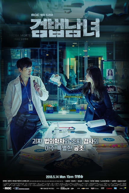 Drama Korea Investigation Couple Subtitle Indonesia