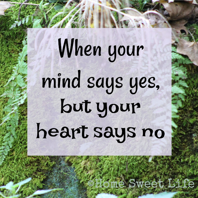 heart says no, grief, coping, time