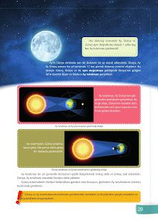 6. Sınıf Fen Bilimleri Ders Kitabı Cevapları Sevgi Yayınları Sayfa 29