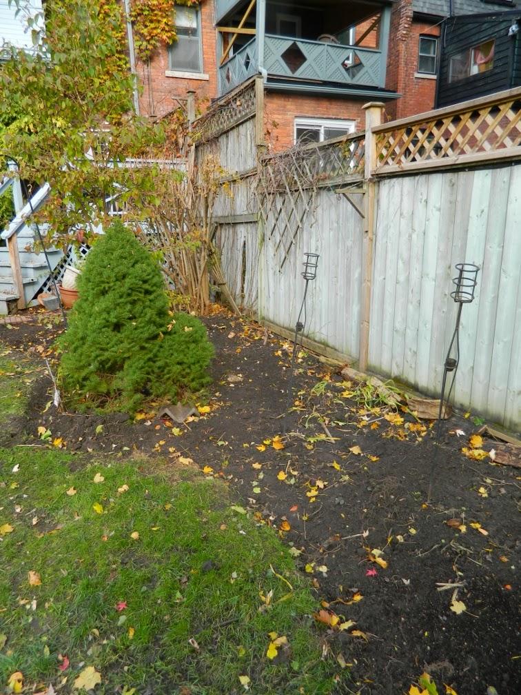Annex garden cleanup Annex east bed Paul Jung Toronto Gardening Services after