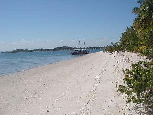 ilha goio barra grande bahia